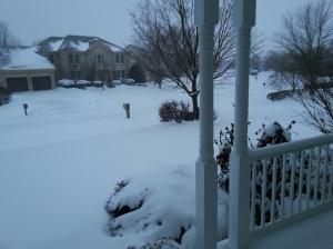 snow jan 2014 2