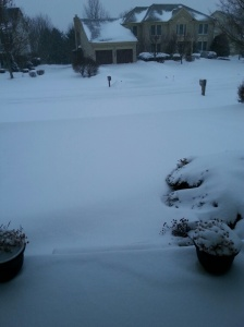 snow jan 2014