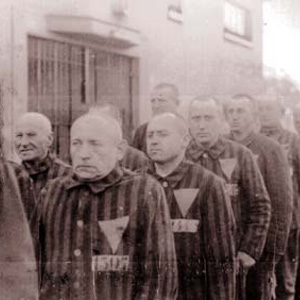 Gays Imprisoned During Holocaust