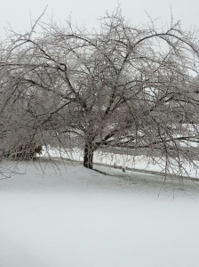 Ice Feb 5-3