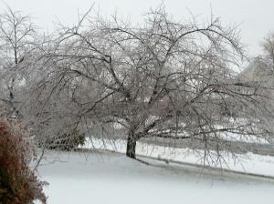 Ice Feb 5-4