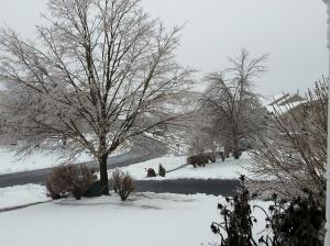 Ice Feb 5-5