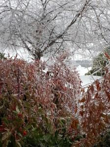 Ice Feb 5-7