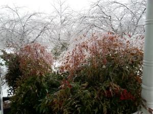 Ice Feb 5-8