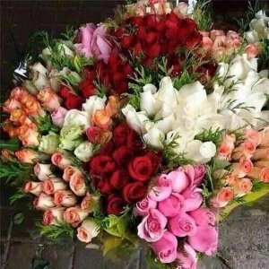 valentine flowers from pamela